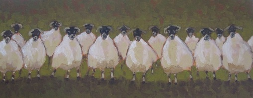 Sheep Haka